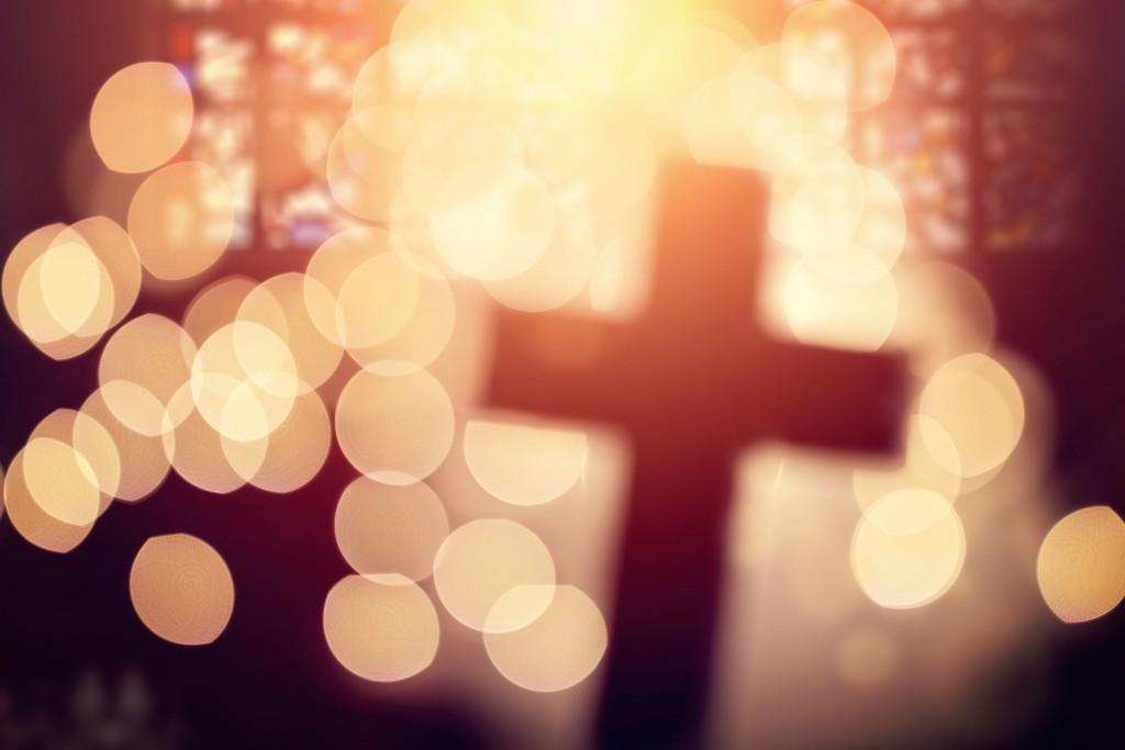 cruz (4)