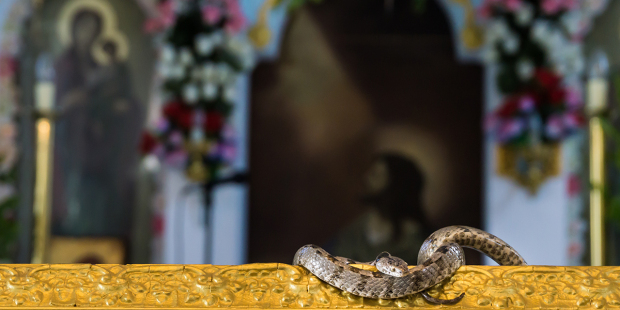 web3-dormition-day-of-virgin-mary-holy-snakes-greece-shutterstock_1042314271