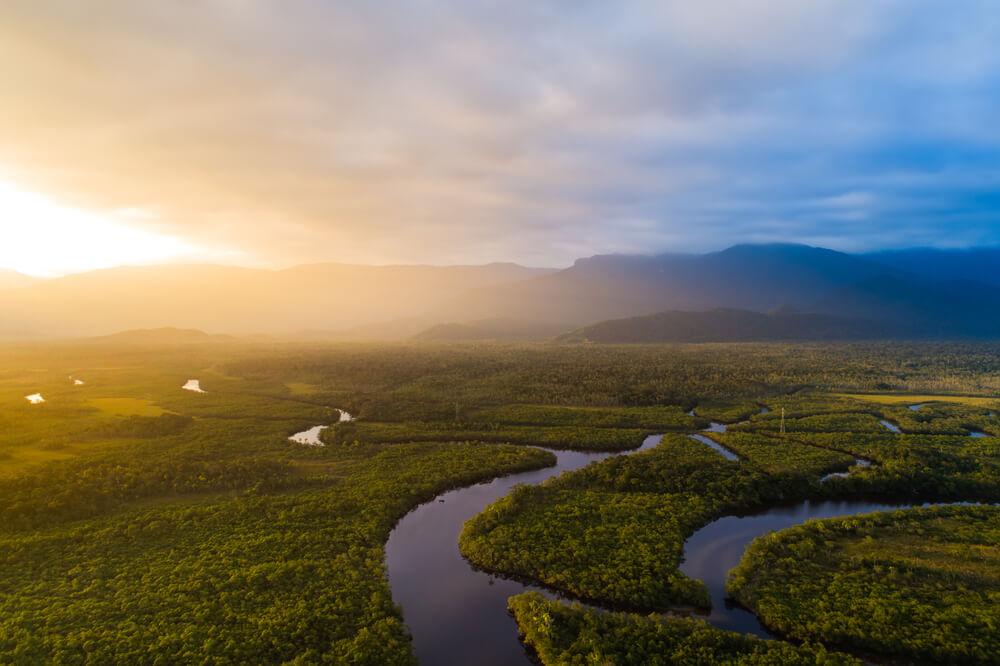 Próxima edição do Sínodo dos Bispos refletirá sobre a Amazônia