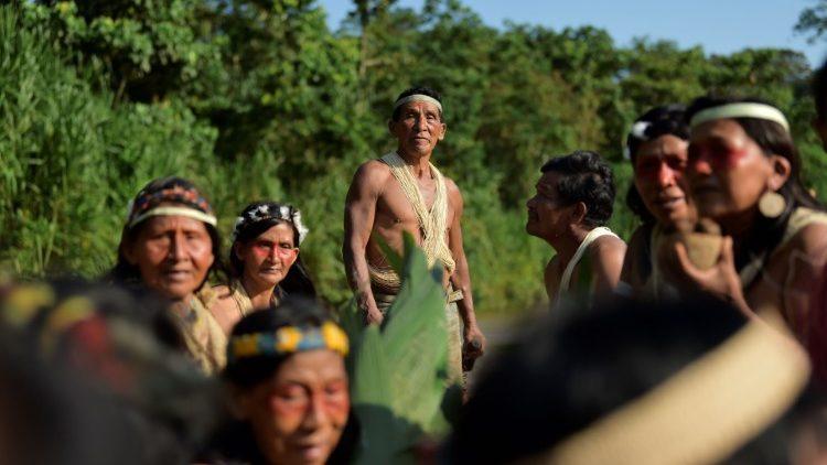 Papa: Amazônia sofre com mentalidade cega e destruidora que favorece o lucro